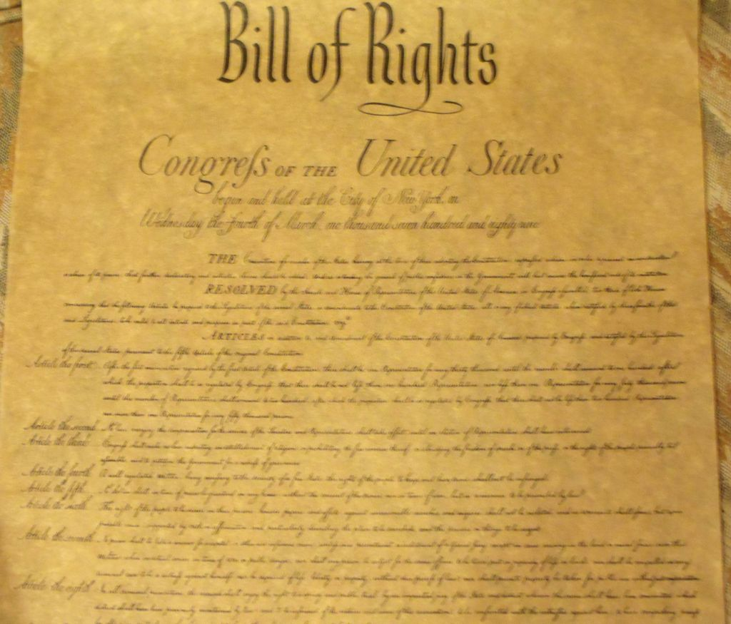Bill of rights essay