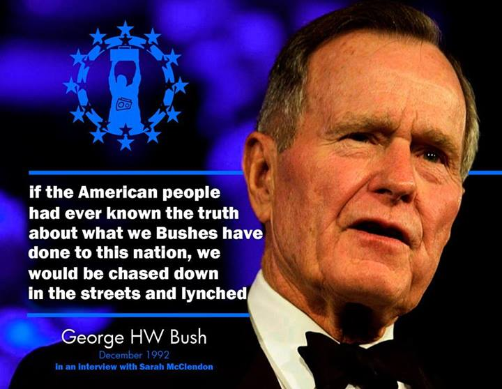 honest-bush