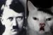 SPLC Declares Hitler Cat Racist!