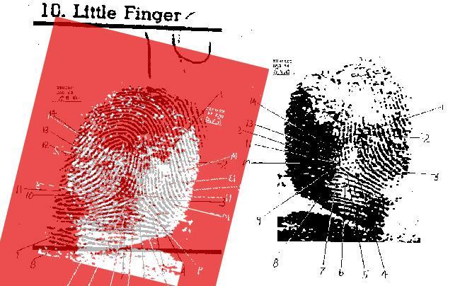fingerprints0copy